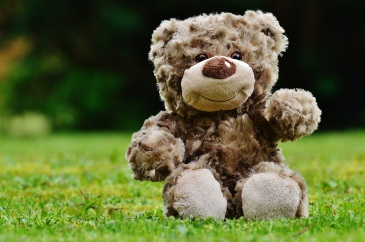 teddy-soft-toy-stuffed-animal-teddy-bear-89774